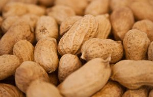 Peanuts from FreePix.com